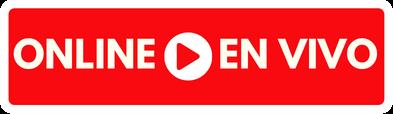 Conferencia en vivo - marketing digital online